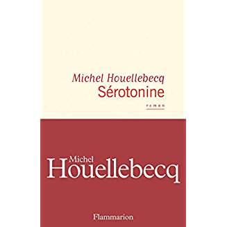 """Dans """"Sérotonine"""" de Michel Houellebecq, voici ce qu'il y a de """"gilets"""